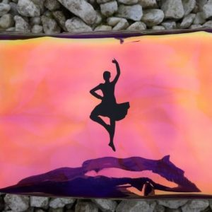Dancer Toiletry Bag