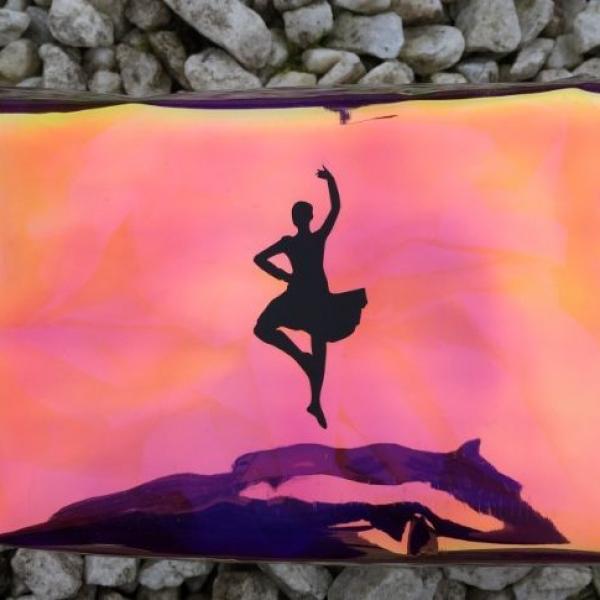 Dancer Toiletry Bag